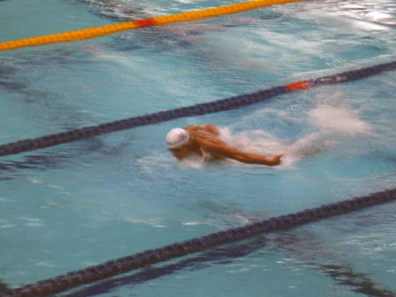 東京六大学水泳対抗戦